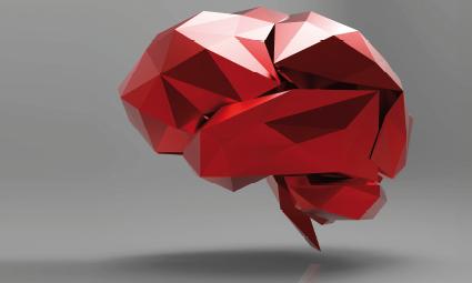 mozek pod lupou
