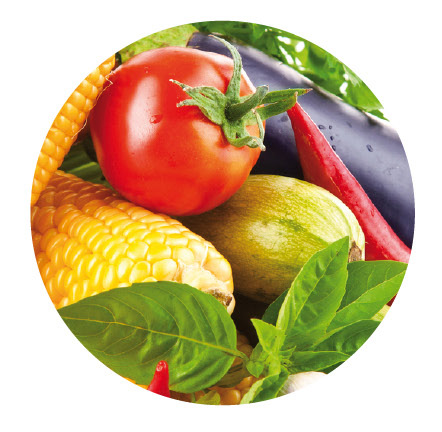 8 zásad zdravé výživy