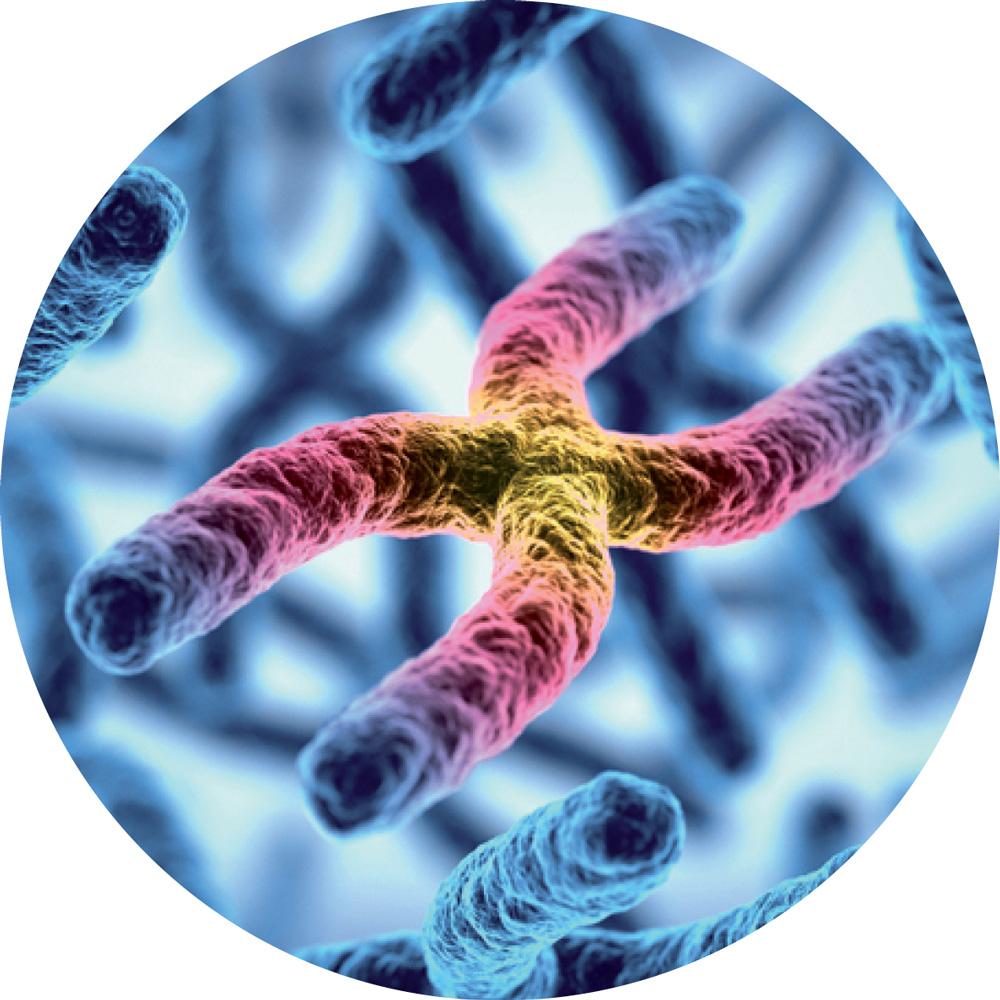 prediktivní genomika