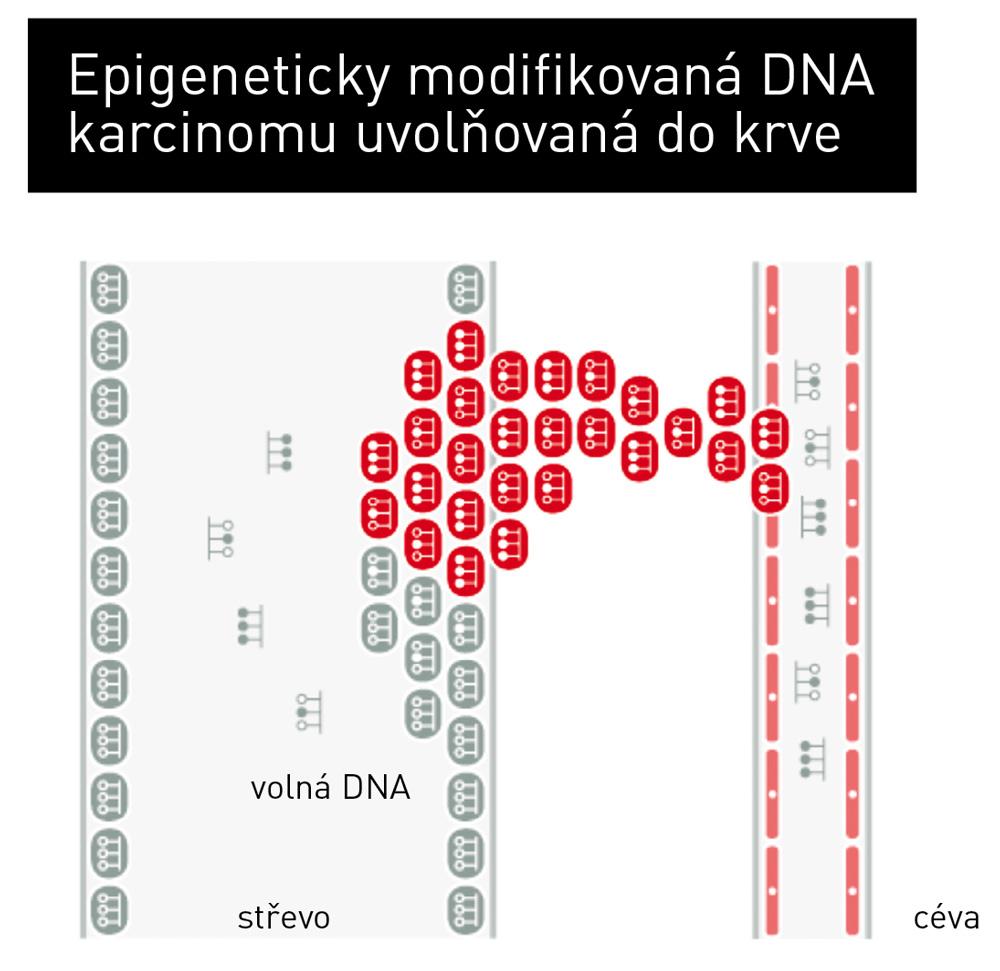 epigenomika